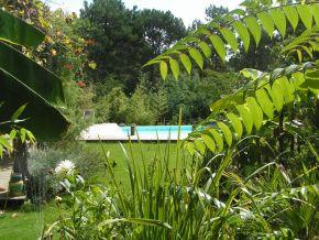 Elagage abatage et entretien de jardin lacanau m doc 33 for Entretien jardin gironde