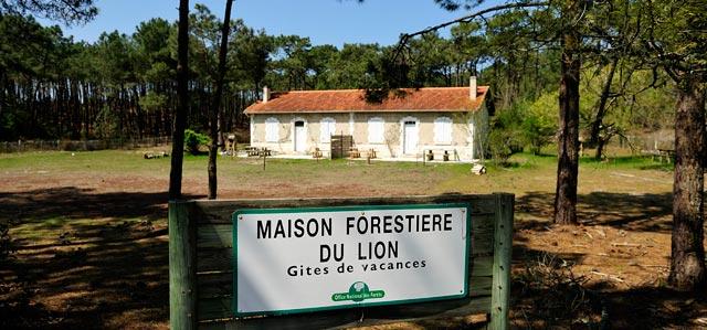 https://lacanauocean.com/image/0-LACANAU-OCEAN/LACANAU/PLAGE-LACANAU-PHOTO/PLAGE-DU-LION/maison-forestiere-du-lion-gite-vacances.jpg