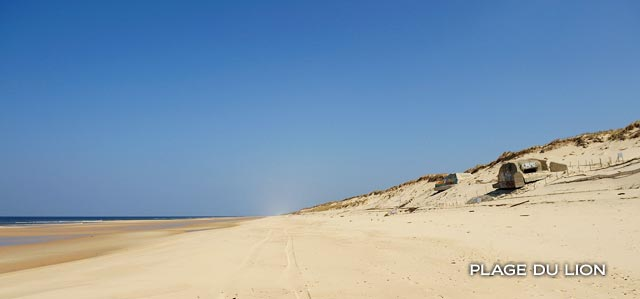 https://lacanauocean.com/image/0-LACANAU-OCEAN/LACANAU/PLAGE-LACANAU-PHOTO/PLAGE-DU-LION/plage-du-lion-lacanau-sud.jpg