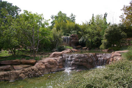 Cascades du caldwell zoo les plus belles cascades for Cascade jardin japonais