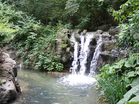 cascades du jardin japonais d 39 honolulu hawaii les plus belles cascades artificielles. Black Bedroom Furniture Sets. Home Design Ideas