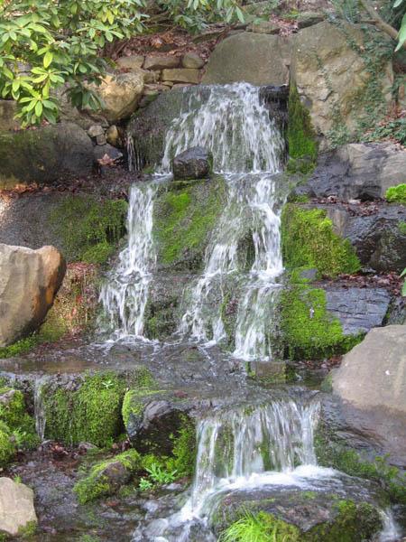 Cascades du jardin de crystal springs les plus belles for Cascade bassin jardin