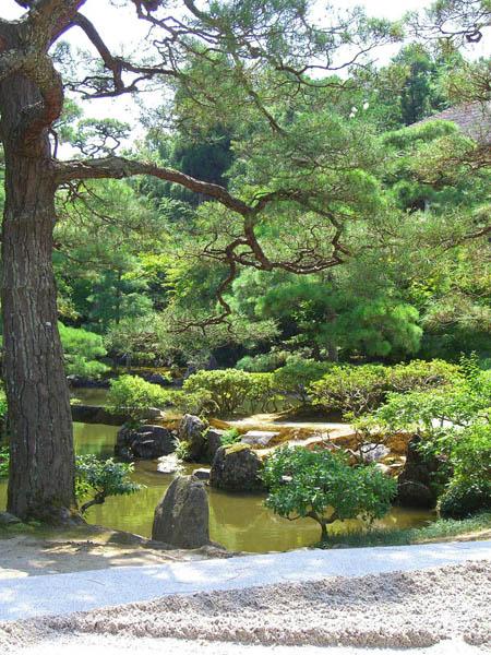 Cascades cascade du jardin japonais de kyoto au temple de for Jardin kyoto