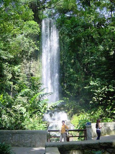 Cascade artificielle de jurong bird park singapoure la for Cascade jardin japonais