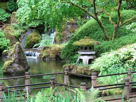 Cascades du jardin japonais de portland garden les plus for Les plus belles plantes artificielles
