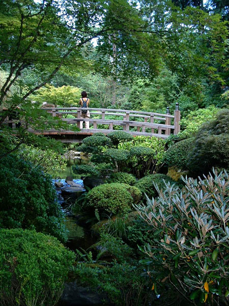 photo pont japonais au parc botanique de portland les plus beaux bassins aquatique du monde. Black Bedroom Furniture Sets. Home Design Ideas